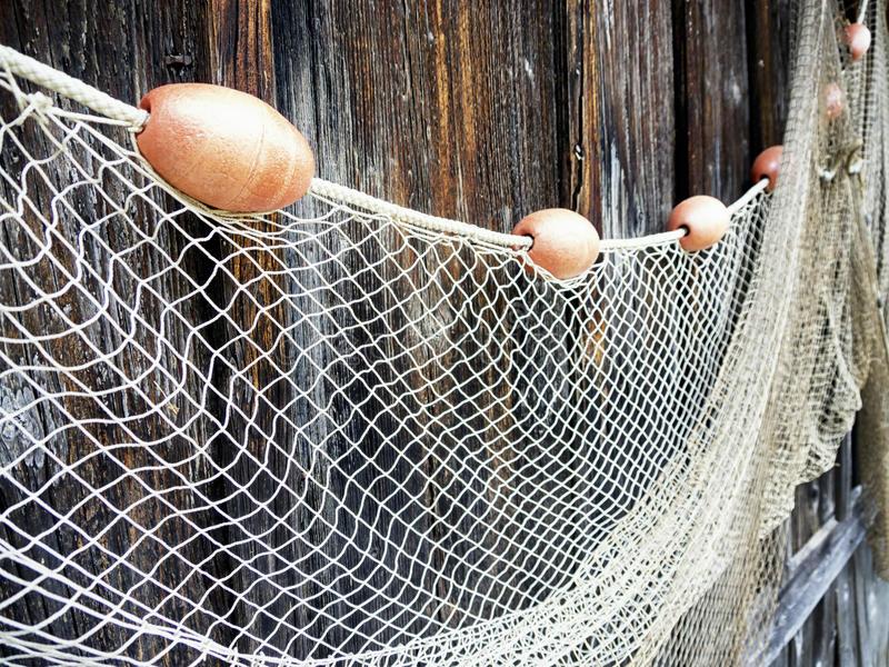 cung cấp dây giềng lưới đánh cá